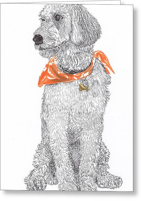 Pen And Ink Framed Prints Greeting Cards - Golden Poodle Greeting Card by Jack Pumphrey