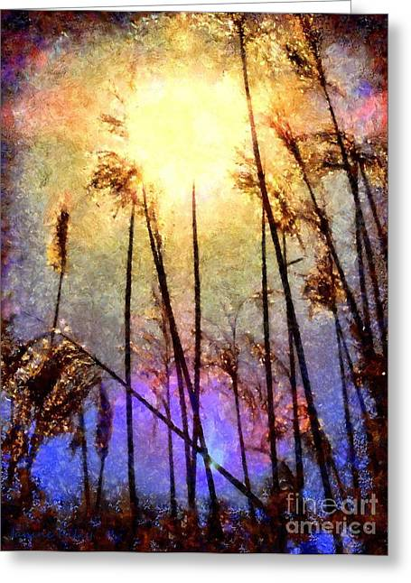 Golden Marsh Greeting Cards - Golden Sun Rays on Beach Grass Greeting Card by Janine Riley