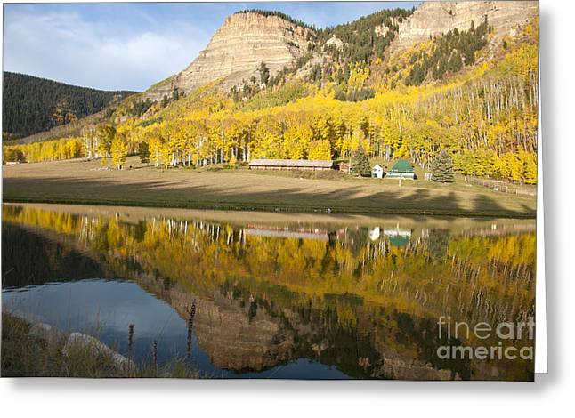 Colorado Pyrography Greeting Cards - Golden Reflections Colorado Greeting Card by David  King
