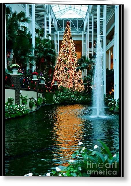 Golden Reflections Greeting Card by Kathleen Struckle