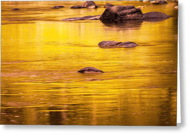 Golden Reflections North Fork Flathead River Painted Greeting Card by Rich Franco