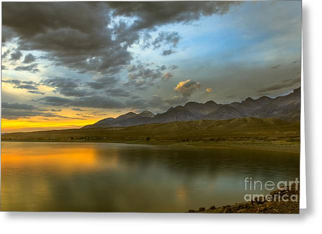 Salmon River Idaho Greeting Cards - Golden Reflections Greeting Card by Robert Bales