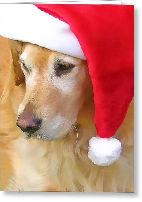 Dog Photographs Greeting Cards - Golden Retriever Dog in Santa Hat  Greeting Card by Jennie Marie Schell