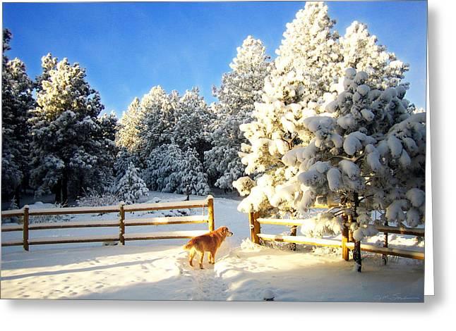 Julie Magers Soulen Greeting Cards - Golden Retriever Dog in Snow Greeting Card by Julie Magers Soulen