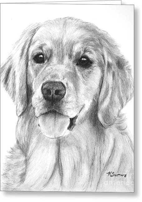 Working Dog Drawings Greeting Cards - Golden Retriever Jessie Adult Greeting Card by Kate Sumners