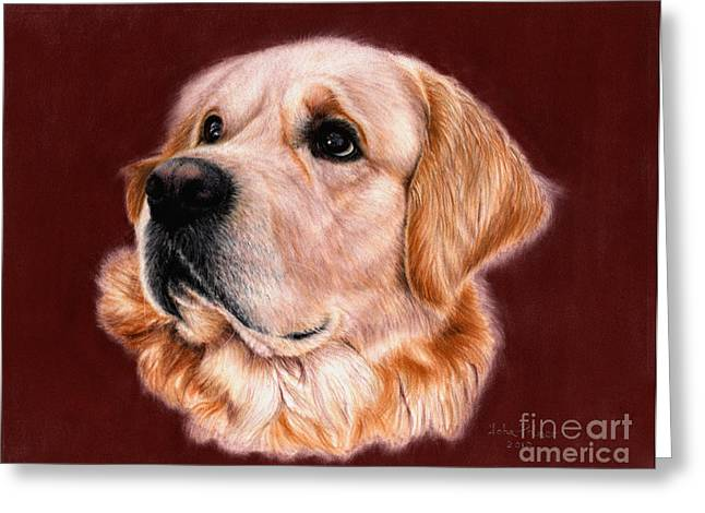 Working Dog Greeting Cards - Golden Retriever Portrait Greeting Card by John  Palmer