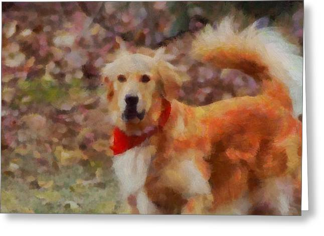 Golden Retriever Red Bandana Greeting Card by Dan Sproul