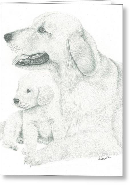 Temperament Drawings Greeting Cards - Golden Retriever Greeting Card by Ronald Scott