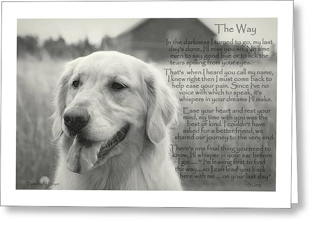 Golden Retriever The Way Greeting Card by Sue Long