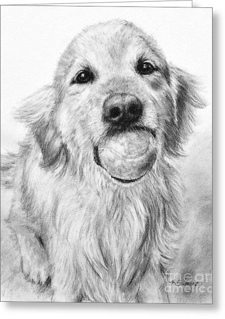 Charcoal Dog Drawing Drawings Greeting Cards - Golden Retriever with Ball Greeting Card by Kate Sumners