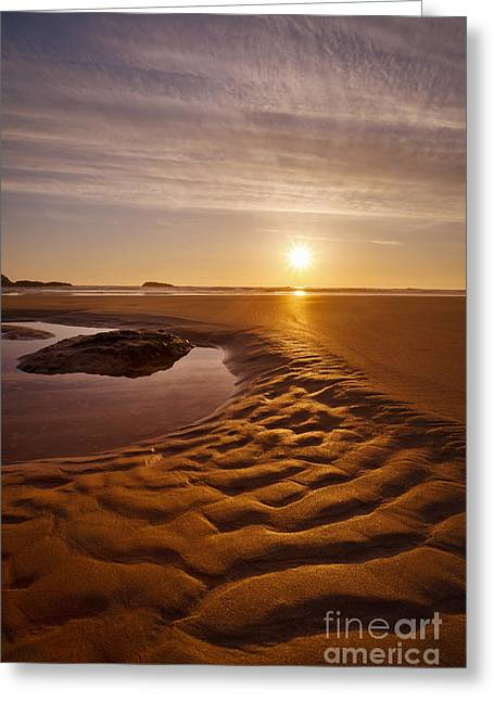 Stein Greeting Cards - Golden Ripples Greeting Card by Silvio Schoisswohl