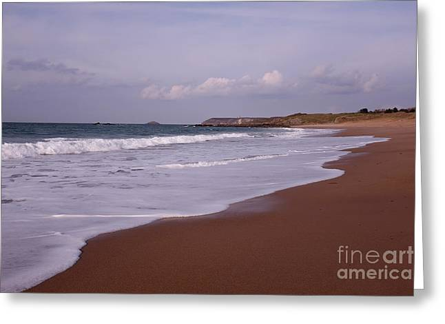 Sauber Greeting Cards - Golden Sands Greeting Card by Carol Weitz