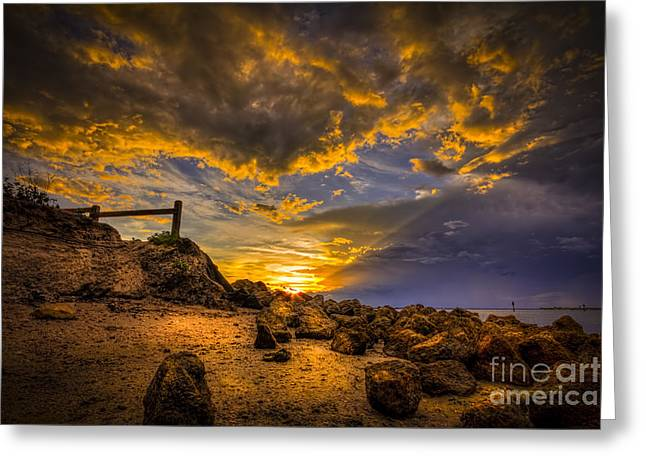 Tampa Greeting Cards - Golden Shore Greeting Card by Marvin Spates