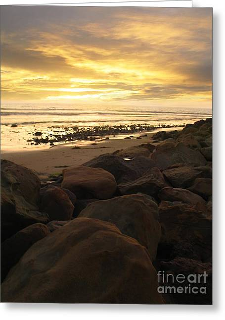 Golden Brown Greeting Cards - Golden Shore Greeting Card by Stu Shepherd