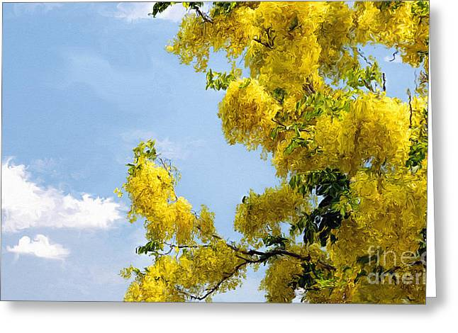 Fistula Greeting Cards - Golden Shower Tree Greeting Card by Ted Guhl