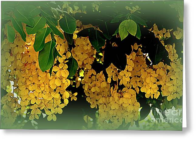 Fistula Greeting Cards - Golden Shower Tree Greeting Card by Toni Abdnour