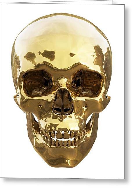 Human Skull Greeting Cards - Golden skull Greeting Card by Vitaliy Gladkiy