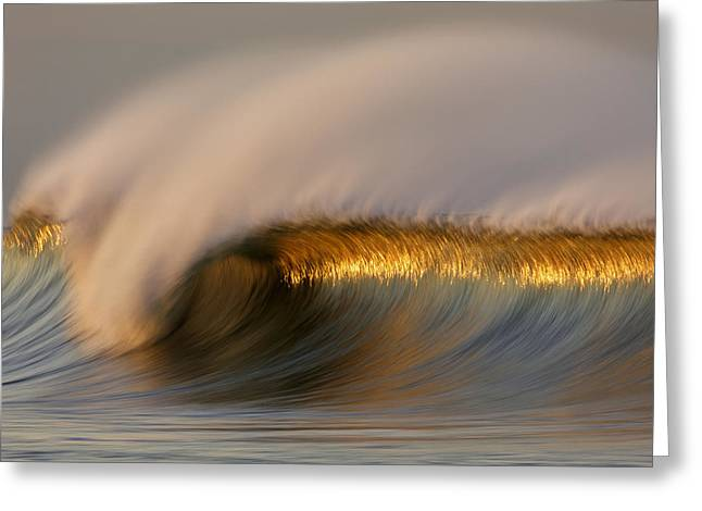 Recently Sold -  - California Ocean Photography Greeting Cards - Golden Stripe MG_9094 Greeting Card by David Orias