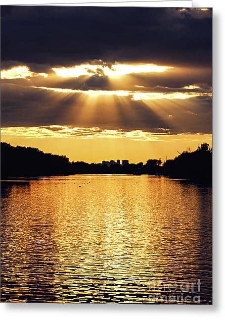 Reflecting Sunset Greeting Cards - Golden sunrays Greeting Card by Elena Elisseeva