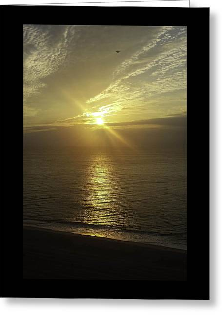 Para Surfing Greeting Cards - Golden Sunrise Greeting Card by Debra Bowers