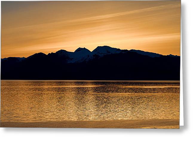 Panoramic Ocean Greeting Cards - Golden Sunrise Greeting Card by Marilyn Wilson