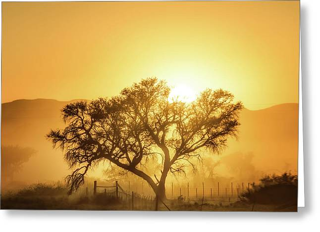 Golden Sunrise Greeting Card by Piet Flour