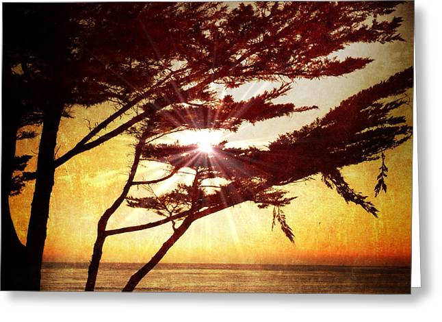 Big Sur Greeting Cards - Golden Sunset on Carmel Beach Greeting Card by Charlene Mitchell