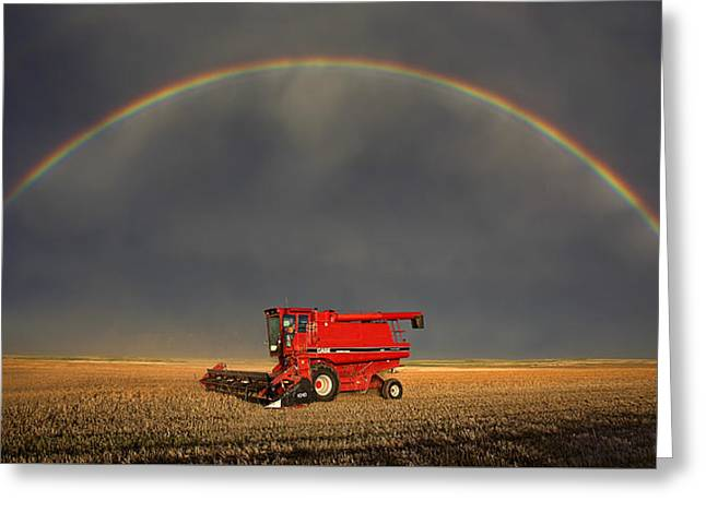 Best Sellers -  - Farmers Field Greeting Cards - Golden Greeting Card by Thomas Zimmerman