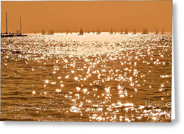 Gloaming Greeting Cards - Golden Time Greeting Card by Maureen J Haldeman