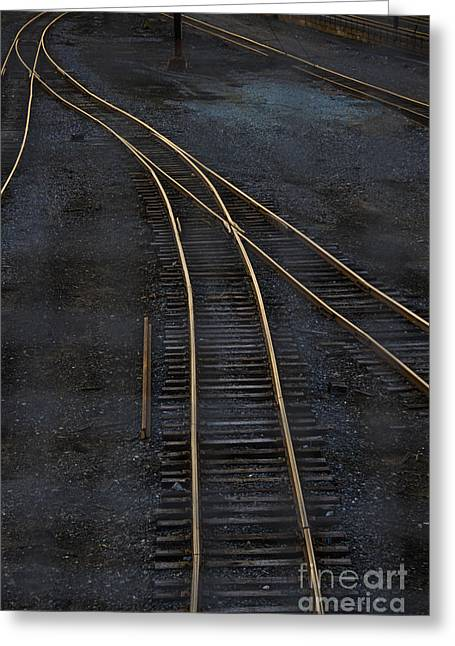 Train Tracks Greeting Cards - Golden Tracks Greeting Card by Margie Hurwich