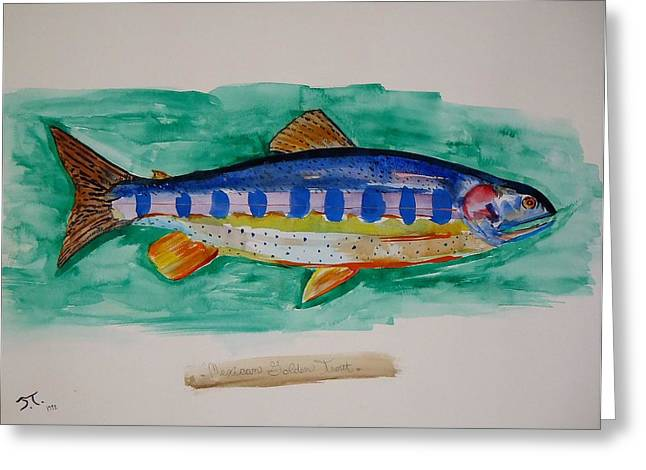 Golden Trout Greeting Cards - Golden Trout Greeting Card by Troy Thomas