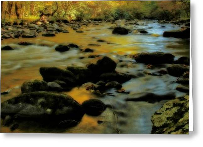 Reflections Of Trees In River Photographs Greeting Cards - Golden View Of The Little River In Autumn Greeting Card by Dan Sproul
