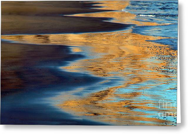 Marin County Digital Art Greeting Cards - Golden Water Reflections Point Reyes National Seashore Greeting Card by Wernher Krutein
