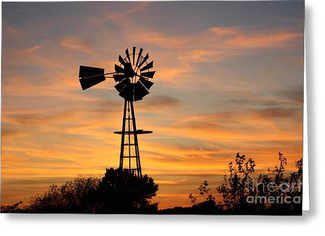 Golden Windmill Silhouette Greeting Card by Robert D  Brozek