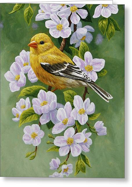 Song Birds Greeting Cards - Goldfinch Blossoms Greeting Card 2 Greeting Card by Crista Forest