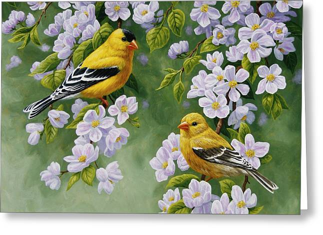 Song Birds Greeting Cards - Goldfinch Blossoms Greeting Card 4 Greeting Card by Crista Forest