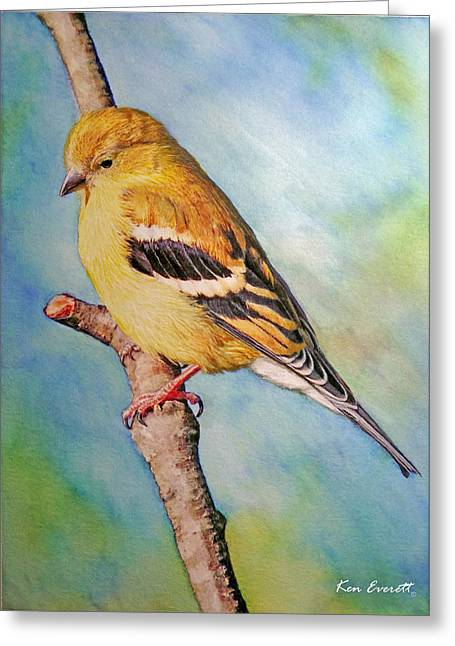 Affordable Greeting Cards - Goldfinch Female Greeting Card by Ken Everett