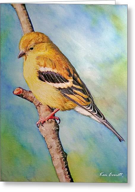 Goldfinch Female Greeting Card by Ken Everett