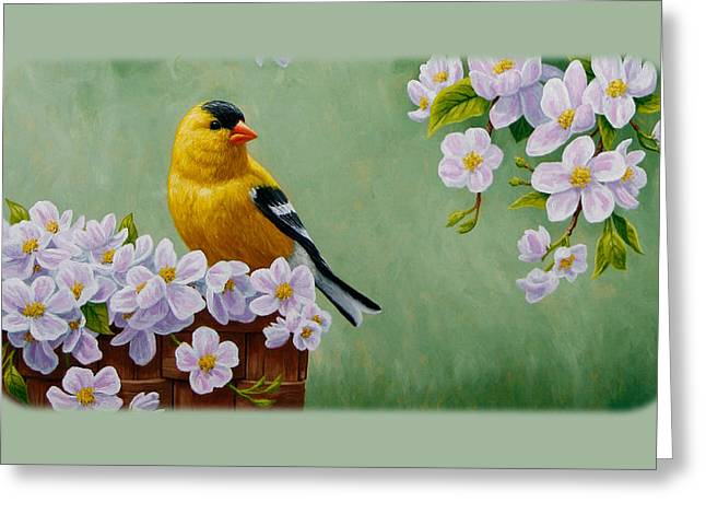 Flower Baskets Greeting Cards - Goldfinch iPhone Case H1 Greeting Card by Crista Forest