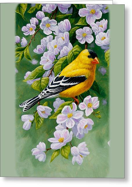 American Goldfinch Greeting Cards - Goldfinch iPhone Case V2 Greeting Card by Crista Forest