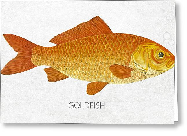 Fish Digital Greeting Cards - Goldfish Greeting Card by Aged Pixel
