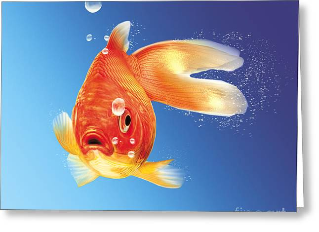 Fish Digital Art Greeting Cards - Goldfish With Water Bubbles Greeting Card by Leonello Calvetti