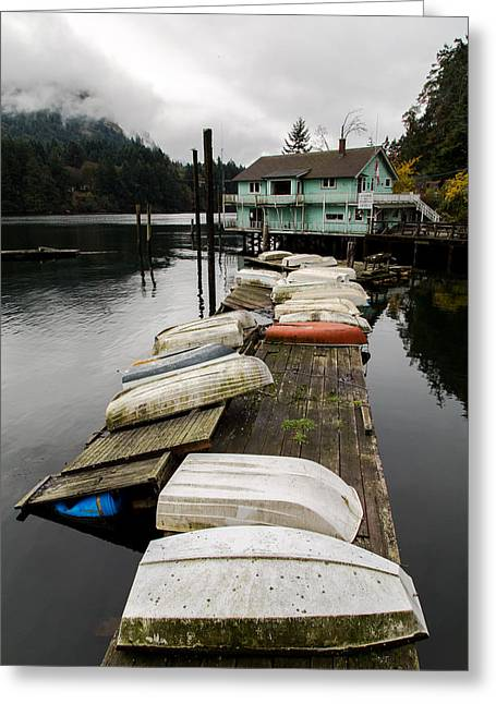 North Vancouver Greeting Cards - Goldstream Marina Greeting Card by John Daly