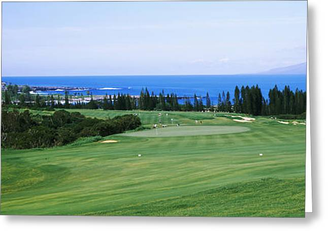 Recently Sold -  - Ocean Landscape Greeting Cards - Golf Course At The Oceanside, Kapalua Greeting Card by Panoramic Images