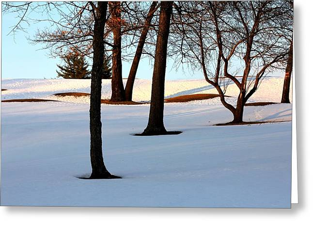 Golfcourse Greeting Cards - Golf Course Shadows Greeting Card by Charlene Reinauer