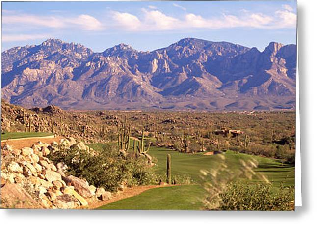 Mountain Greeting Cards - Golf Course Tucson Az Greeting Card by Panoramic Images