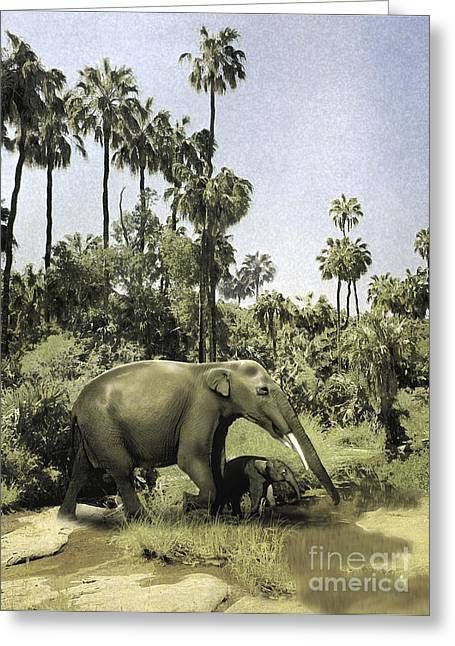 Gomphotherium Guiding Its Offspring Greeting Card by Jan Sovak
