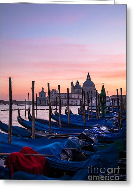 Prow Greeting Cards - Gondolas moored at sunrise - Venice - Italy Greeting Card by Matteo Colombo