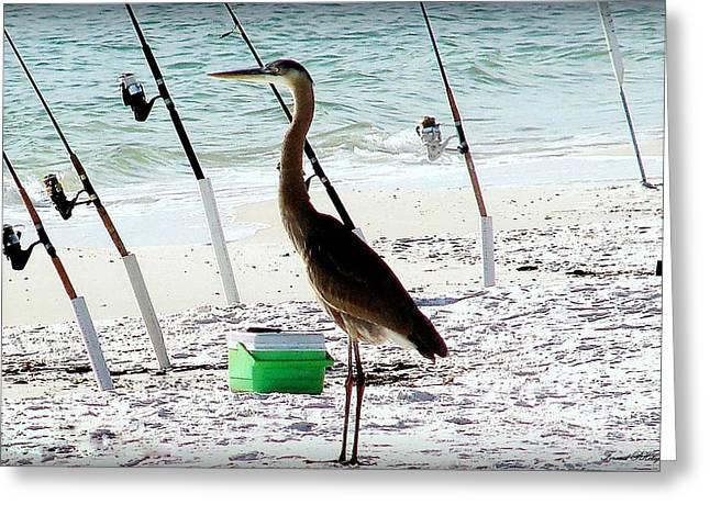 Panama City Beach Greeting Cards - Gone Fishing Greeting Card by Debra Forand