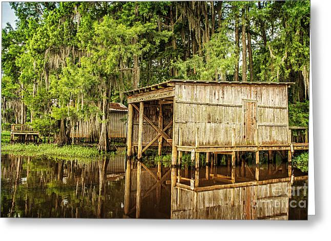 Gone Fishing On Caddo Lake Greeting Card by Tamyra Ayles